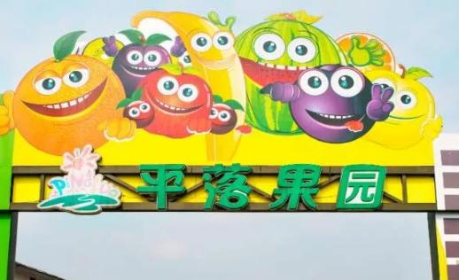 【平乐古镇】可口蓝莓季,入园敞开吃!仅68元抢「平乐果园」蓝莓采摘1大1小套餐!可带走1斤~提供户外烧烤架!