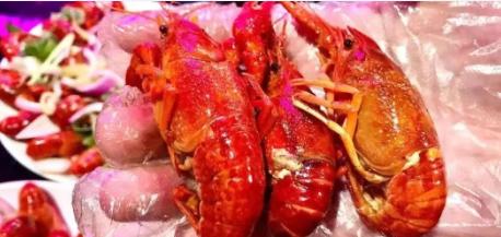 【二七广场】喝酒撸虾!视听盛宴!¥59.9抢价值298「live house音乐酒厨」4斤小龙虾(456钱)!麻辣/蒜蓉2选1!