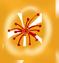 大唐天城| 地道成都品牌火锅~口碑chao赞~仅¥9.9抢「巴食派火锅」100元代金券1张~粥、甜品、餐前小菜免费吃~多款调料~